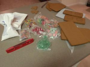 icing mix, assorted candy, gingerbread, decorating bags (with tips) and level (not pictured - beer #1 and electric mixer)